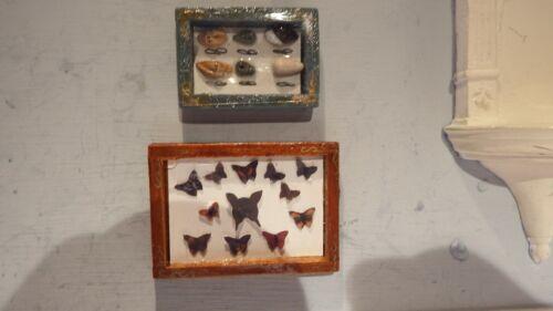 Maison de Poupées Accessoires Papillon 1x collection 1x Shell Collection//encadrée 1.12