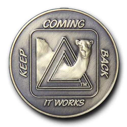 Keep Coming Back Sober Camel AA  Recovery Program Bronze Coin// Chip//Token