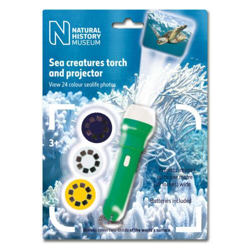Taschenlampe Meerestiere mit Projektor Tiere des Meeres Schildkröte Krake