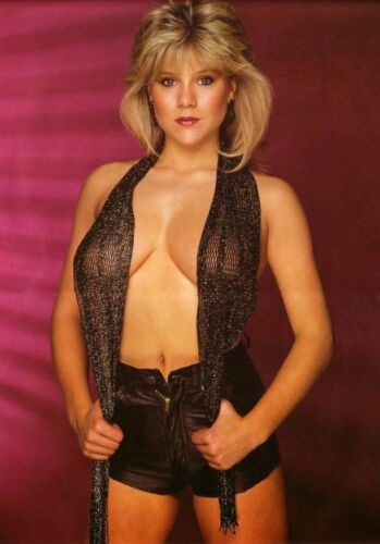 Hollywood 80/'s Stars Hunks Playboy 13A SAMANTHA FOX Poster Multiple Sizes
