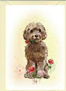 Cockapoo-Brown-Dog-4-034-x6-034-Blank-Card-ideal-Mothers-Day-Valentine-Card-etc