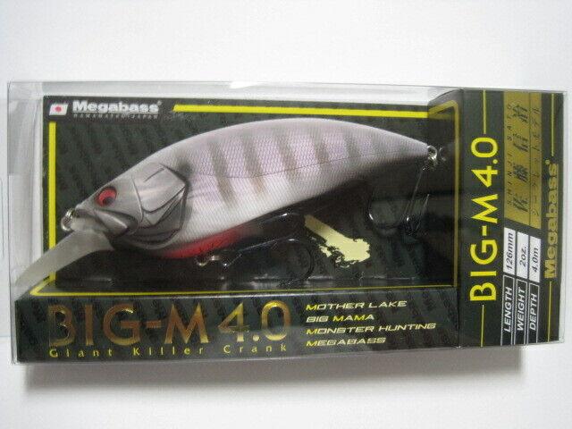 Megabass ito BIGM 4.0 HAGURE GILL Coloreee SHOP SPECIAL Limited NIP