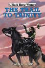 The Trail to Trinity by Owen G. Irons (Hardback, 2015)