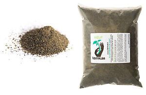 Kelp-500g-TERRALBA-algue-engrais-germination-hormones-croissance-defense
