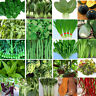 Variety Heirloom Garden vegetable seed Non-GMO seeds bank survival organic plant