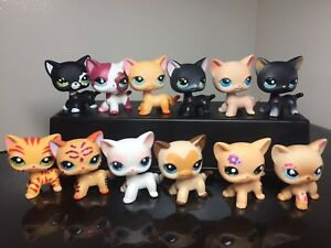 3x Littlest Pet Shop Lps Cats 339 2249 3573 994 2291 3pc Random