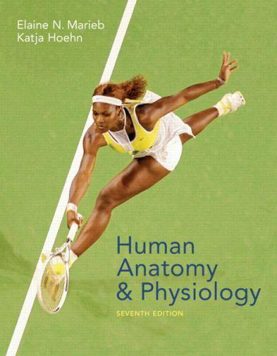 Human Anatomy And Physiology By Katja Hoehn And Elaine Nicpon Marieb - $0.99