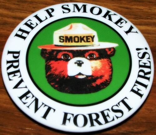 Vintage Rauchfarbige der Bär Hilfe Vorbeugen Forest Fires! 6.3cm Pin Button Down