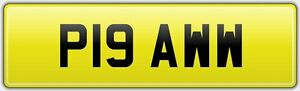 PET-GROOMING-VAN-NUMBER-PLATE-P19-AWW-PAW-KITTY-CAT-DOG-K9-CANINE-CLIPPERS-AW