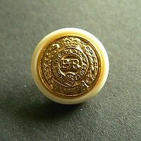 10 edle beige-goldfarbene Wappenknöpfe (d349gb-15mm)