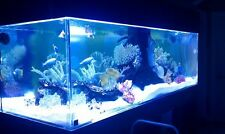 Custom Acrylic Aquarium You Can Build And Save BIG $$!! More........