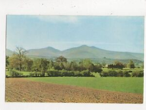 Brecon-Beacons-From-Bishops-Meadow-Motel-Postcard-648a