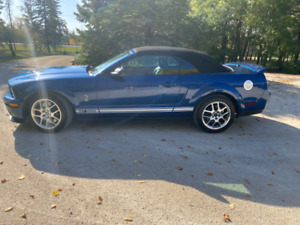 2009 Shelby Mustang GT