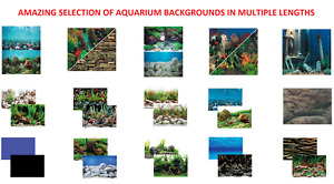 Seaview-Quality-Aquarium-Fish-Tank-18-039-039-Tall-Background-Range-Picture-Backing