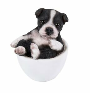 Image Is Loading Black And White Boston Terrier Puppy Dog Teacup