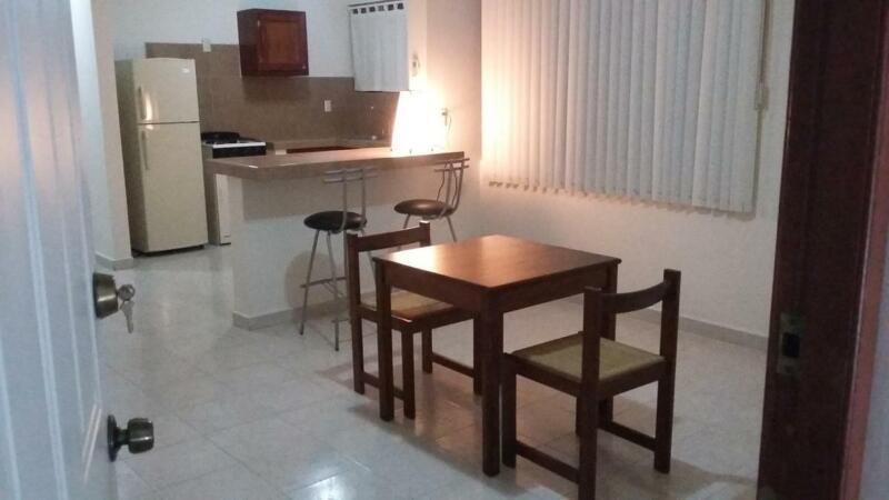 (ALDR2110) Departamento Amueblado en Renta Col. Guadalupe  Info.   833  :  131  :  9004