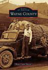 Wayne County by Wayne County Museum (Paperback / softback, 2011)