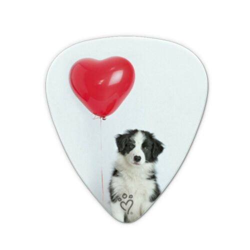 Border Collie Dog Heart Valentines Love Novelty Guitar Picks Medium Set of 6