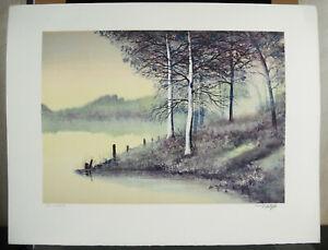 Print-Original-Signed-Ed-16-250-c1980-Signature-IN-Determine-20-1-2in