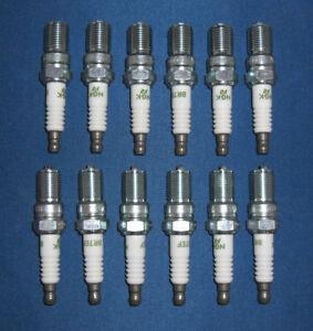 Jaguar-Daimler-Ngk-Spark-Plugs-encaja-Xj12-Serie-3-amp-Xjs-V12-el-ebc4021-X-12