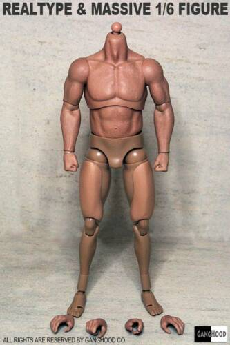 IN STOCK 1//6 Emulated Muscular Body GangHood For Arnold Wolverine HotToys U.S.A