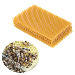10pcs-Yellow-Honeycomb-Foundation-Bee-Hive-Wax-Frames-Beekeeping-Equipment-Sheet