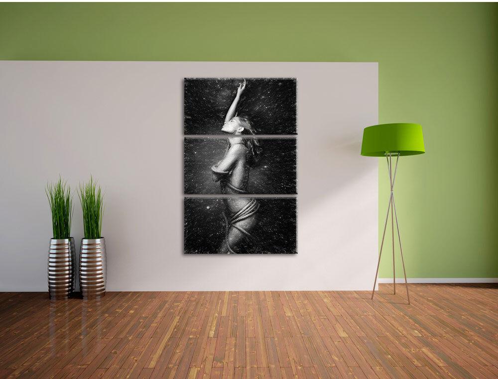 Bella donna in in in corda avvolto arte effetto carbone 3-Divisorio Tela Decorazione 3d31f7