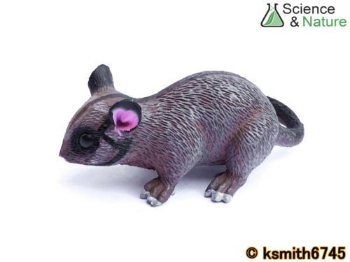 Nuevo S/&N grandes Leadbeater/'s Possum Plástico Juguete Animal Salvaje Zoológico De Australia