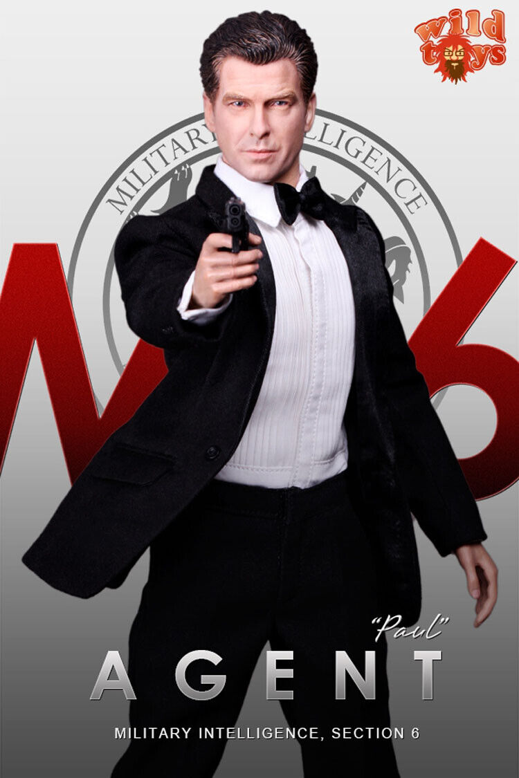 DID WT21 1 6 Pierce Brosnan 007 M16 Agent Figure Collectible Doll Toy