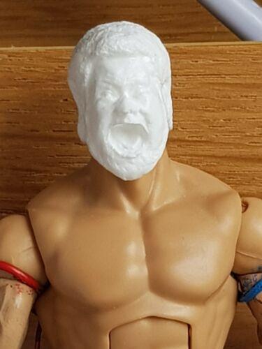 WWE Mattel custom head Cast-Mattel Jakks Haku Figure fourragères