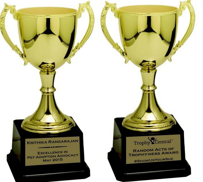 Trophy Engraving service   Tokai   Gumtree Classifieds South Africa    211014470