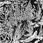 Wild Strawberries von Eternal Tapestry (2015)