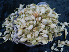 Jasmine fiori erbe wicca/pagano/Incantesimo forniture/Erbe/Incenso Stregoneria