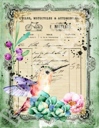 Vintage Shabby Chic Hummingbird /& Succulents 8x10 Craft Cotton Fabric Block