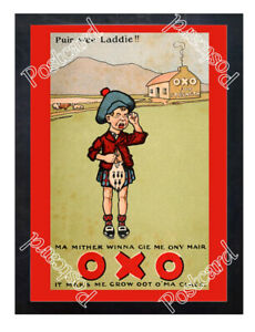 Historic-Oxo-cubes-1900-Advertising-Postcard