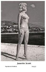 JANETTE-SCOTT-Film-star-Pin-Up-PHOTO-POSTCARD-P563-3-Swiftsure-Postcard