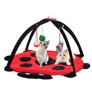 Red-Cat-Bed-Pet-Toy-Tree-Furniture-House-Post-Scratcher-Play-Condo-Kitten