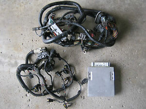 1987-93 5.0L FORD MUSTANG MASS AIR WIRING HARNESS INJECTOR A9P COMPUTER ECU  EFI | eBayeBay