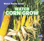 Watch Corn Grow by Kristen Rajczak (Hardback, 2011)