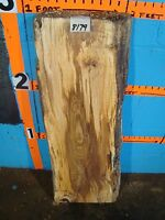 8179, Spalted Tiger Maple Live Edge Slab Mantel Lumber L 36 W12 T2 7/16