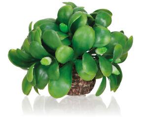 Oase-Biorb-GUI-Boule-Aquarium-reservoir-decoration-plantes-Ornement