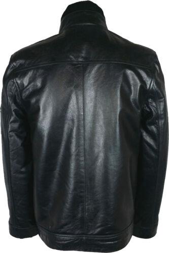 Glazed Mens Jacket Black Real London g2 Leather Unicorn 57OwqBEFxW