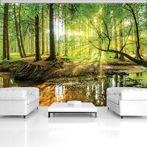 Poster Tapeten Fototapete Wandbild Tapeten Wald Natur Baum Sonnen