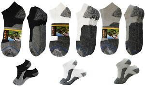 4 Pk No Show Premium Quality Leeds Thick Socks Cotton Low Cut White Socks 9-11