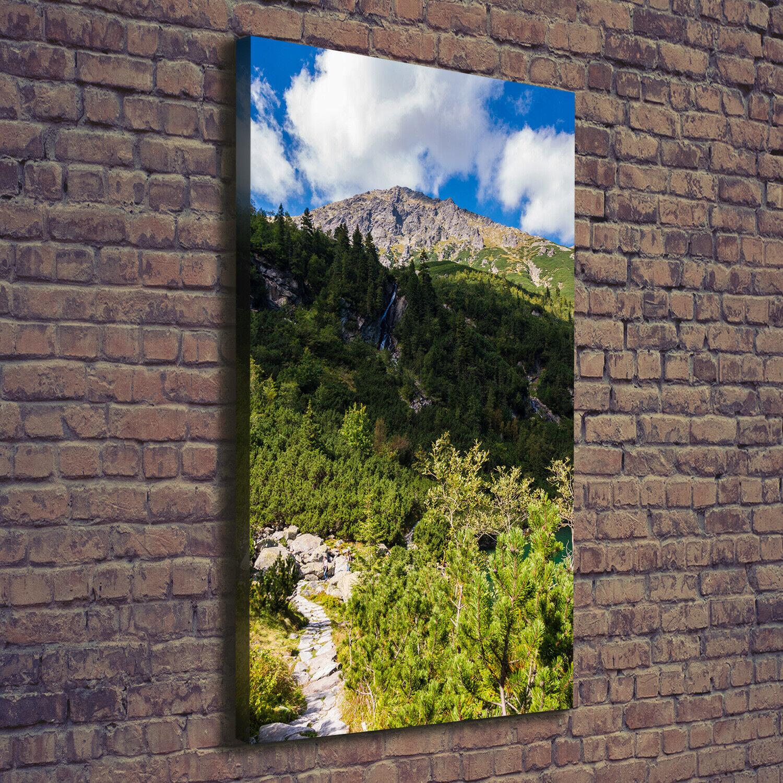Leinwand-Bild Kunstdruck Hochformat 70x140 Bilder Meerauge Berge