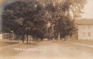 WESTFIELD-PENNSYLVANIA-TREE-LINED-MAPLE-STREET-REAL-PHOTO-POSTCARD-1910s