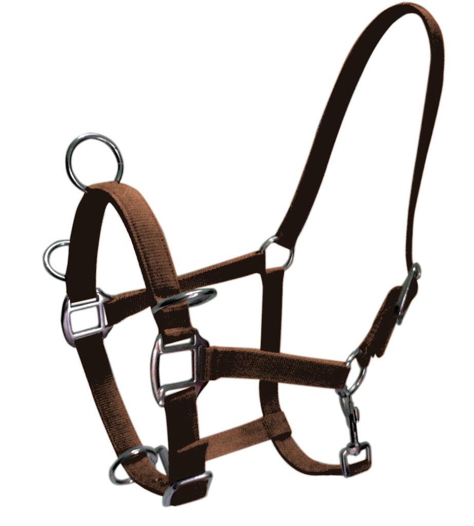 Gee TAC Caballo Lunging Collar de cabeza y 8mt web línea cavesson Bridle Cob marrón