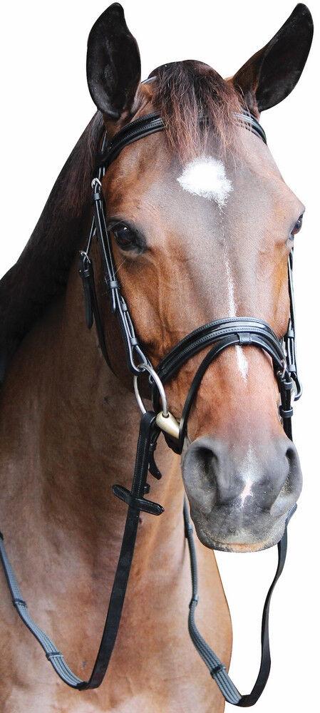 Henri De Rivel piaffer Mono Crown Bridle avec flash nez de Bracelet avec Cuir Verni