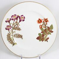 FULL SET 12 SALAD PLATES ANTIQUE HAND PAINTED FLORAL ROYAL WORCESTER CHINA W1701