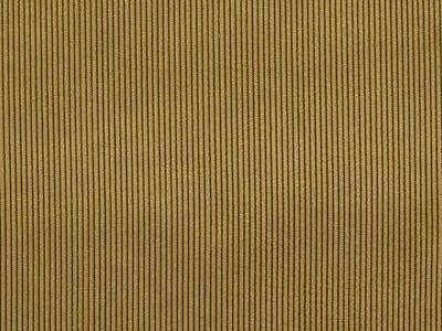 Fein-Cord, Soft Touch, Winterstoff, in 8 tollen Farben! 150cm breit !